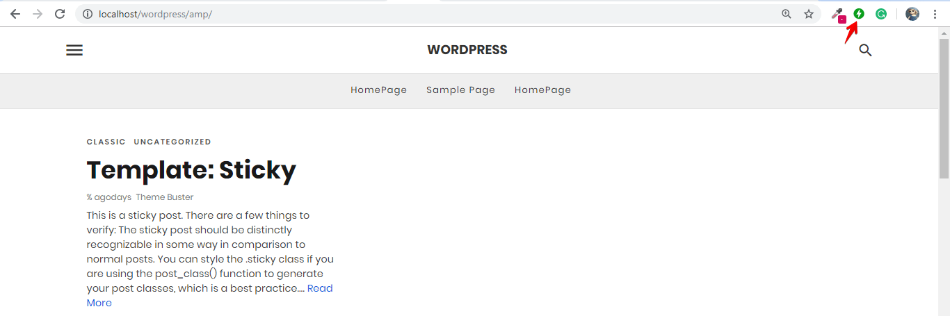 Step-By-Step Guide for Implementing AMP on WordPress - AMP Tutorials